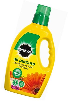 Miracle-Gro All Purpose Concentrated Liquid Plant Food Feed 1L Fertiliser