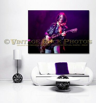 Joe Perry Project 30X40 Fine Art Gallery Canvas Print  Framed Gilcee 12 Choices