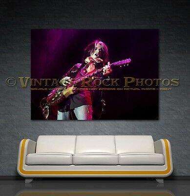 Joe Perry Project 24x36 in Canvas Print Fine Art Gallery Framed Gilcee Photo s57