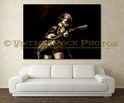 Joe Perry Project 24x36 in Canvas Print Fine Art Gallery Framed Gilcee Photo s04