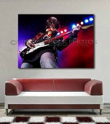 Joe Perry Project 24x36 in Canvas Print Fine Art Gallery Framed Gilcee Photo 9
