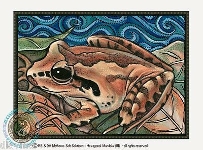 © ART - Australian TREE FROG leaf litter Nature Wildlife Original print by Di