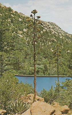 Granite Basin Lake Az.1930s Arizona Postcard Lake Watson Granite Dells Prescott Az Unused