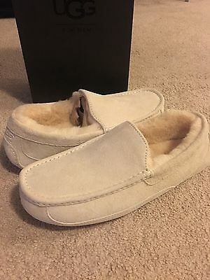 MEN'S UGG Slipper Shoes Off White Ascot Suede Shearling US Size 10