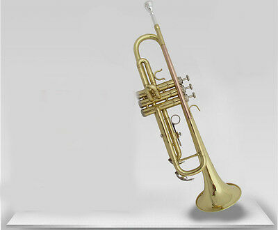 New Double Color Professional B Flat Brass Musical Instruments Trumpet #