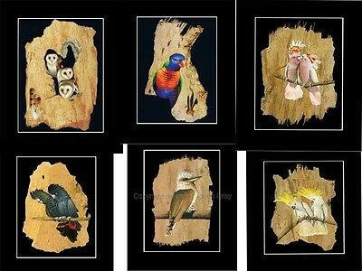 Bargain Buying !!!!  24 Print Set- Bulk Buy  Paperbark Art..- Att Gallery Owners