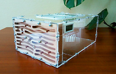 Ant farm AWFK-4. New professional formicarium - ant nest for LIVE ants