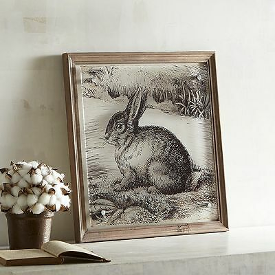 "Pier 1 Imports Bunny Rabbit Easter Sketch Picture Wall Decor Art 16"" x 16"""