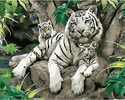 Paint By Number Kit White Tigers DIY Painting Wall Decor PZ7046