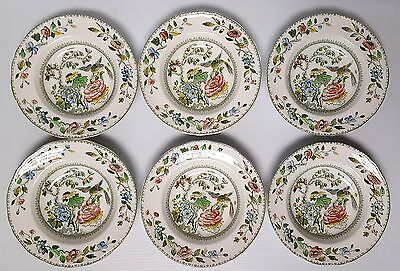 "SET of 6 - CROWN STAFFORDSHIRE DAVENPORT 8 3/4"" Rimmed SOUP BOWLS RARE Bird Tree"