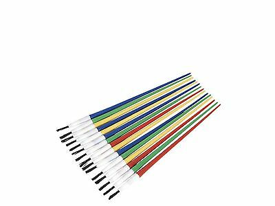 Sealey Touch-Up Paint Brush Assortment 24pc Plastic Handle