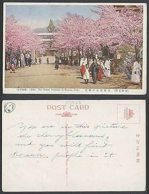 Korea Old Colour Postcard Cherry Blossoms at Nanzan Keijo Korean Women Girl Tree