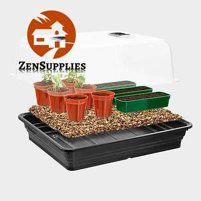 Large Non Electric Propagator by Stewart 52 cm Black Non Heated Clear Lid Indoor