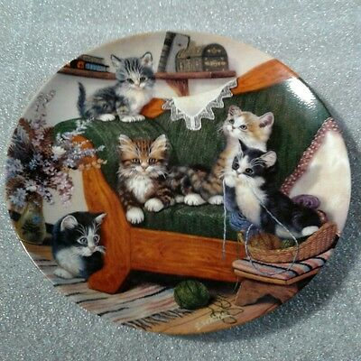 happy tails litter rascals plate