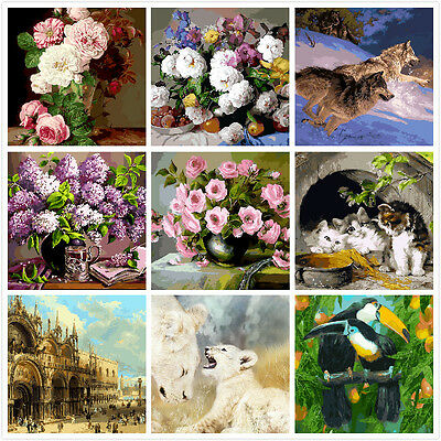 Large PaintIing By Numbers Canvas Kit 40*50cm 80068107 AU STOCK HOME DECOR DIY