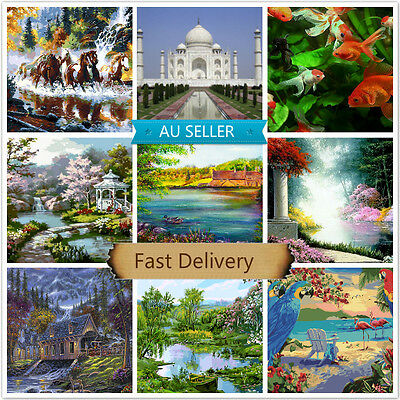 Large PaintIing By Numbers Canvas Kit 40*50cm 81678218 AU STOCK HOME DECOR DIY