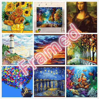 Framed 40*50CM Painting by Number Kit F001009 AU STOCK HOME DECOR DIY ART