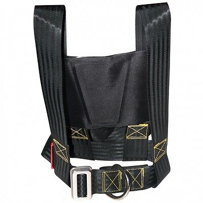 Lalizas Seat belt for adult - Lifebelt