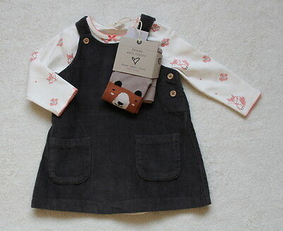 ***BNWT Next baby girl Bear Cord dress, top and tights set 0-3 months***