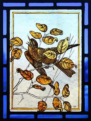 Beautiful Victorian design stained glass panel of singing blackbird