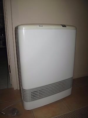 Rinnai Energy Saver Gas Heater