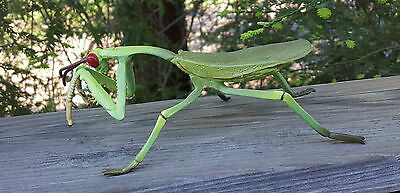 RARE 1994 SMITHSONIAN Giant Green Praying Mantis Insect - 8 Inches Long!