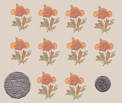10  x Waterslide ceramic decals Decoupage Orange / yellow flowers Floral PD706
