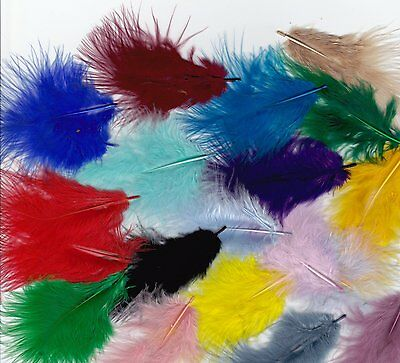 """100 Fluffy Marabou Feathers 1""""-3""""  Choice Of Colours Cardmaking, Floral, Wedding"""