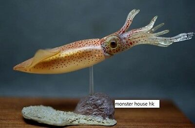 Kaiyodo Natural Monuments of Japan firefly squid Figurine only