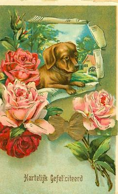 Unusual Old Embossed Postcard PC Dachshund Dog & Roses Germany 1913