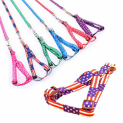 Cute Pet Small Dog Puppy Cat Rabbit Kitten Nylon Harness Collar Leash Lead