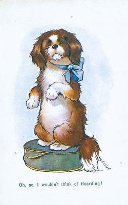 RARE Old Postcard PC Cartoon Pekingese Hoarding Dog England 1919