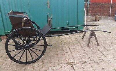 Horse Carriage Pony Trap Driving