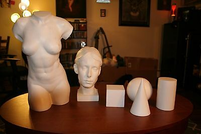 Learn To See Artist Plaster Casts Head, Bust and 3D Shapes for Art classes