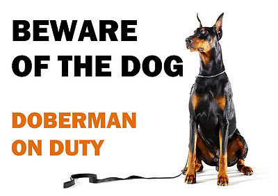 Beware Of The Dog - Doberman On Duty - Laminated Sign Poster Bn