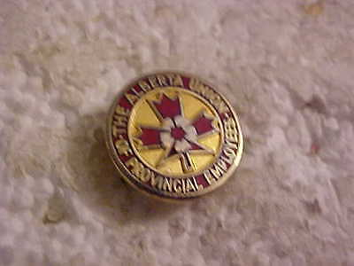 The Alberta Union Of Provincial Employees Lapel Pin
