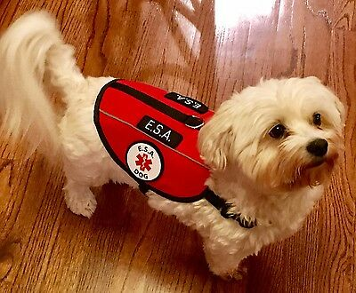 Service Dog Emotional Support Animal ESA Vest Patches Harness ALL ACCESS CANINE™