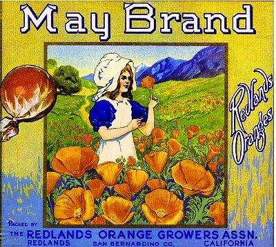 Redlands May #1 California Poppies Orange Citrus Fruit Crate Label Art Print
