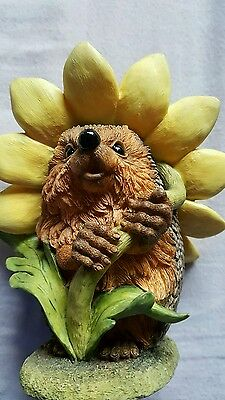 COUNTRY ARTIST ===HEDGIE   == blossom