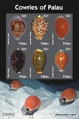 COWRIES SHEETLET OF 6 X 50C - Palau 2007