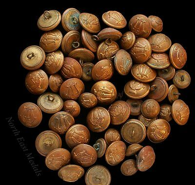 Quantity of Bandsman's / Musician's Brass Buttons (61)