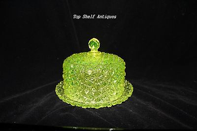 TS Victorian Hobbs #101 Vaseline Daisy and Button Covered Cheese/Butter Dish!