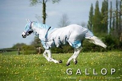All In One Fly Rug FREE fly mask