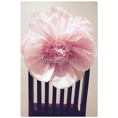 Large Paper Peonies x 5 Bulk Tissue Paper Flowers Wall Decorations