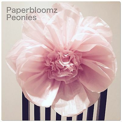 Paperbloomz Pink Paper Peonies x 5 Tissue Paper Flowers Wall Back Drops Decor