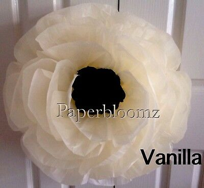 Paperbloomz Large Vanilla Peony Tissue Paper Flowers Event  Wall Decorations