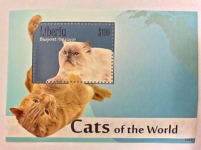 CATS OF THE WORLD S/S $180 - Liberia 2010