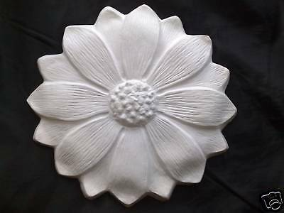Small Plaster Sunflower Or Ceiling Rose 19.5Cm Diam With Free Delivery