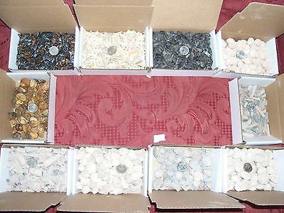 100 fossil Moroccan shark teeth plus 9 different types of fossils per lot