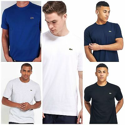 Lacoste Crew Neck T Shirt Five Colours And Sizes